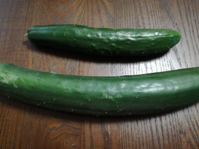 世界 一 栄養 の ない 野菜 として ギネス ブック に 登録 され て いる の は